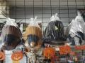 Gorras-imitacion-avestruz-by-Union-de-Tula-Lawnmower-La-Mirada-CA